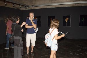 "Exposición ""GLOBS, CIENCIA AZAROSA."". Jaume Lladós."